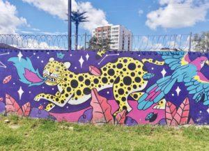 Graffiti Popayán 2019